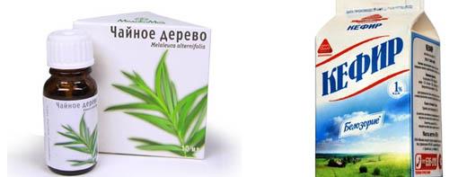 Чайное дерево и кефир