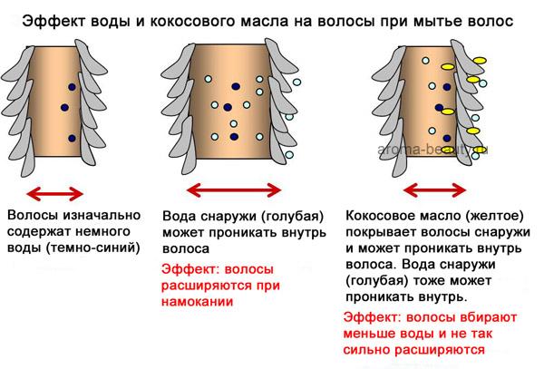 Влияние масла на локоны