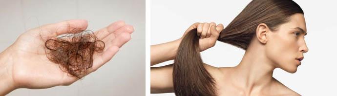Количество волос, выпадающих за день