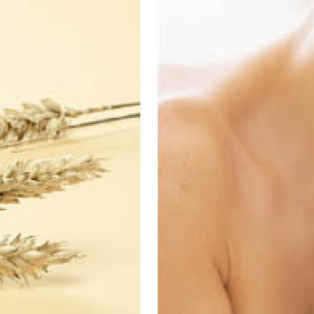 Экстракт пшеничных зародышей для волос