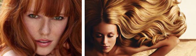 Волосы цвета меда