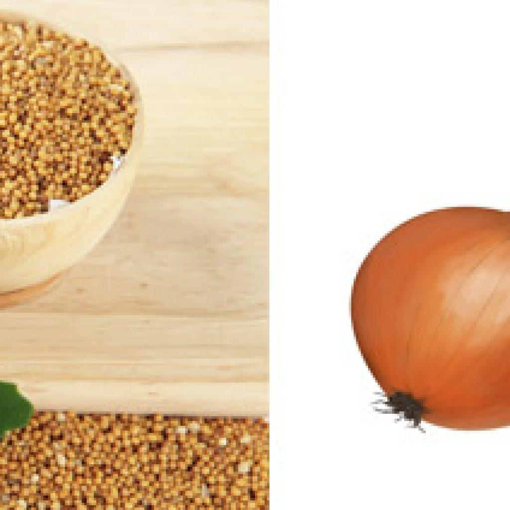 Горчица, лук и чеснок