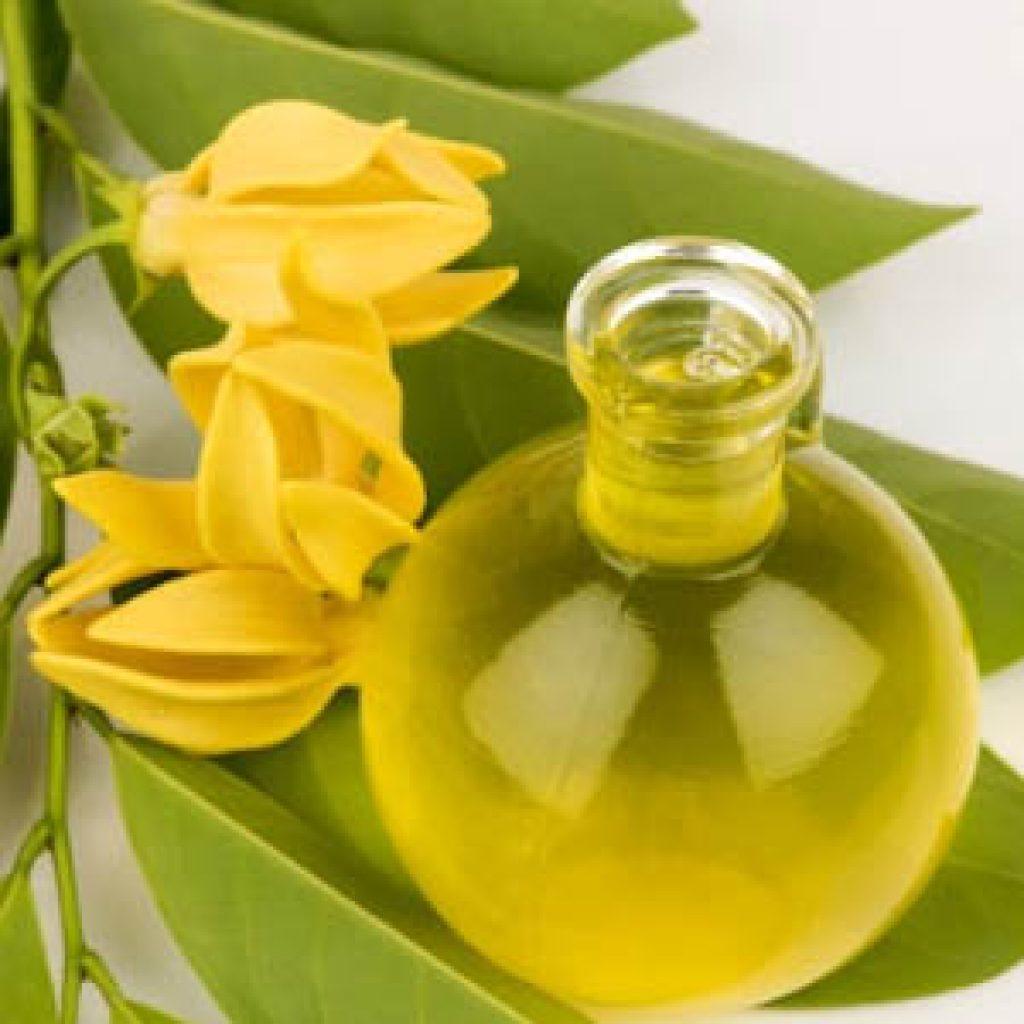 Применение эфирного масла иланг-иланг для волос