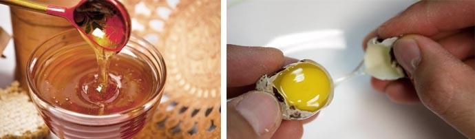Мед и перепелиные яйца