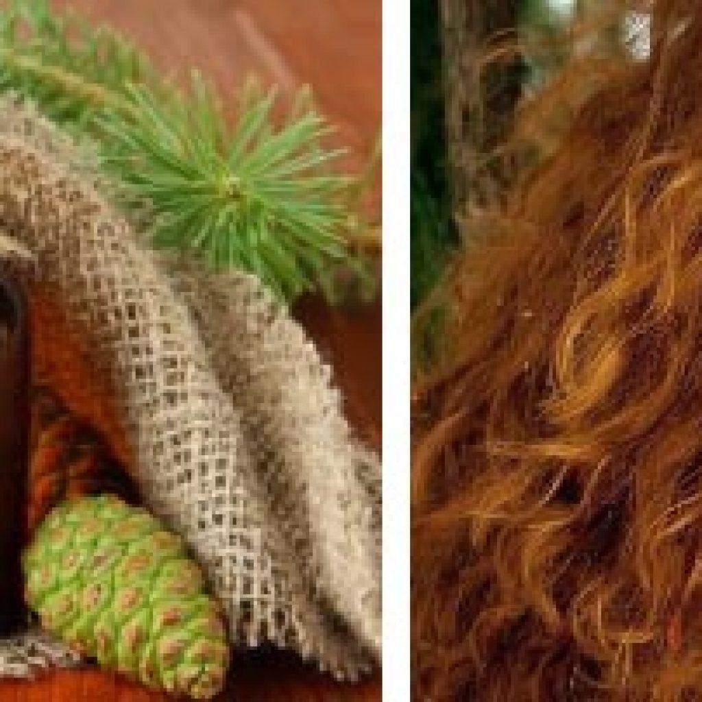 Пихтовый эфир для волос