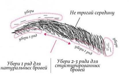 Правила выщипывания волосков