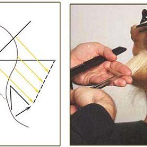 Схема выполнения стрижки