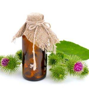 Как пользоваться маслом репейника для волос?